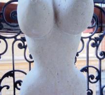 Mona AYOUN, l'histoire de mes seins